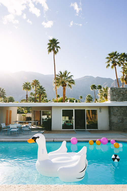 Palm Springs pool with palm trees