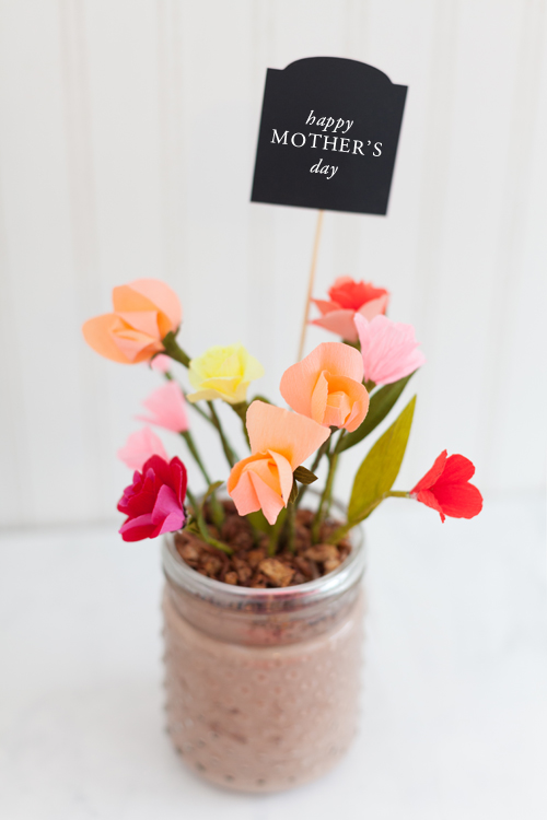Edible flower pot gift idea