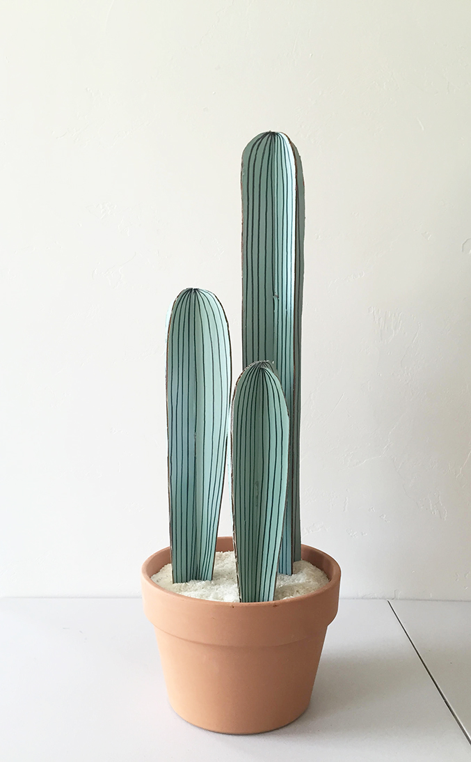 cactus made from cactus