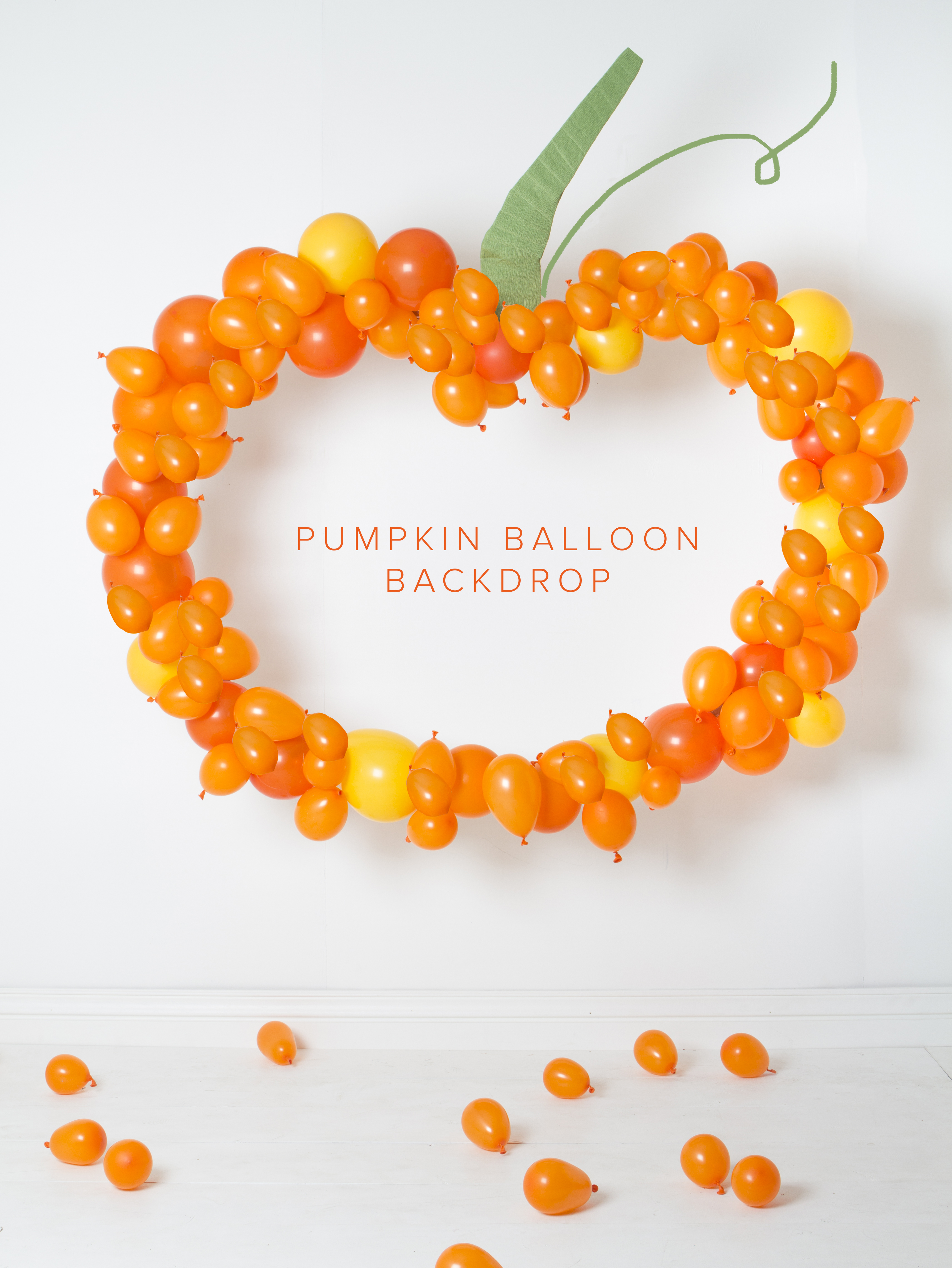 pumpkin backdrop