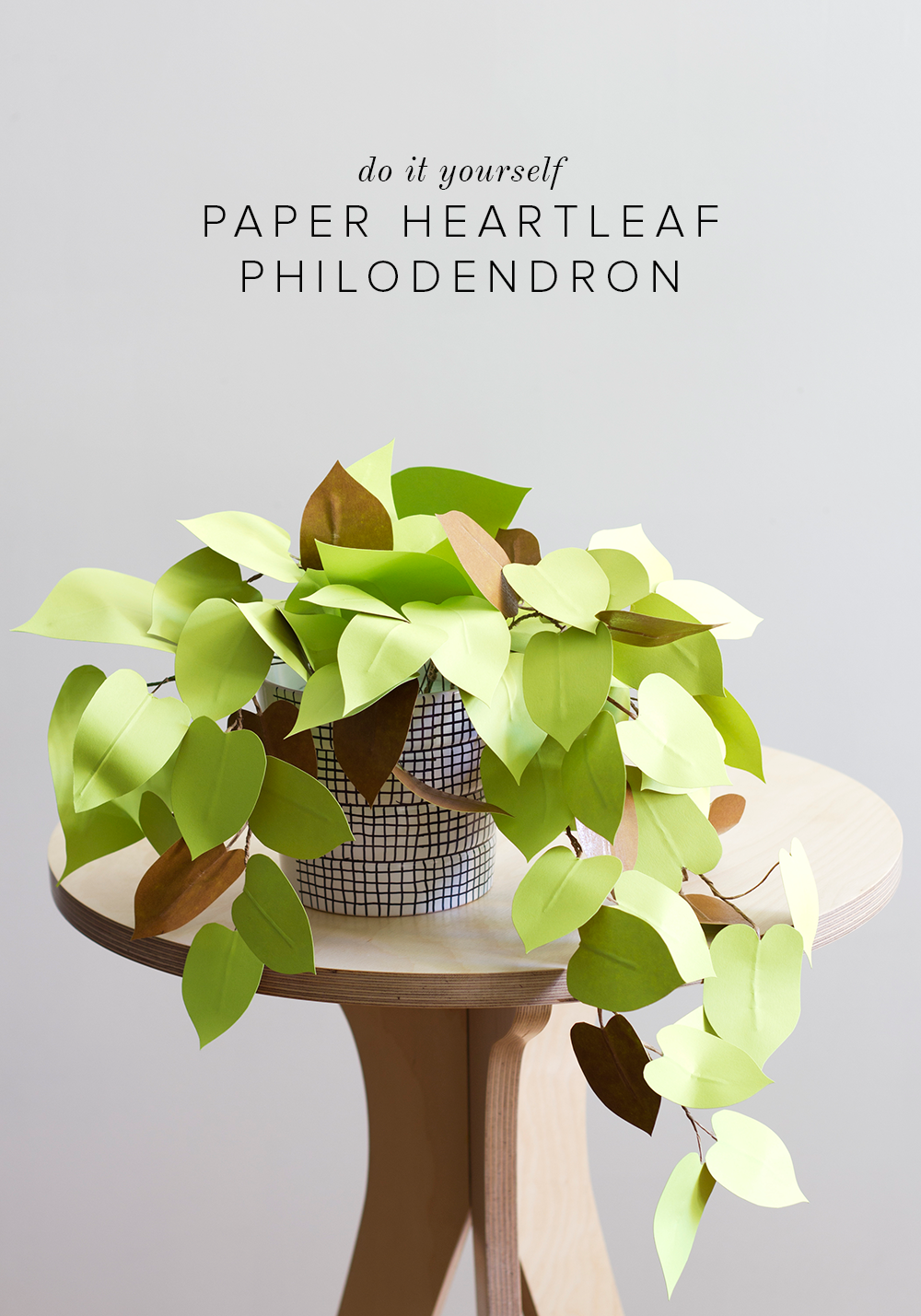 DIY paper heart leaf philodendron
