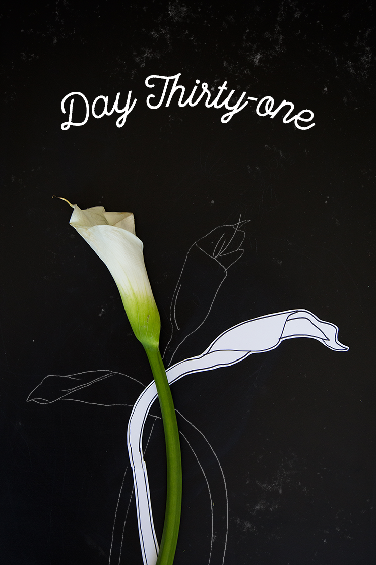 Day 31 how to draw a calla lily the house that lars built day 31 how to draw a calla lily izmirmasajfo