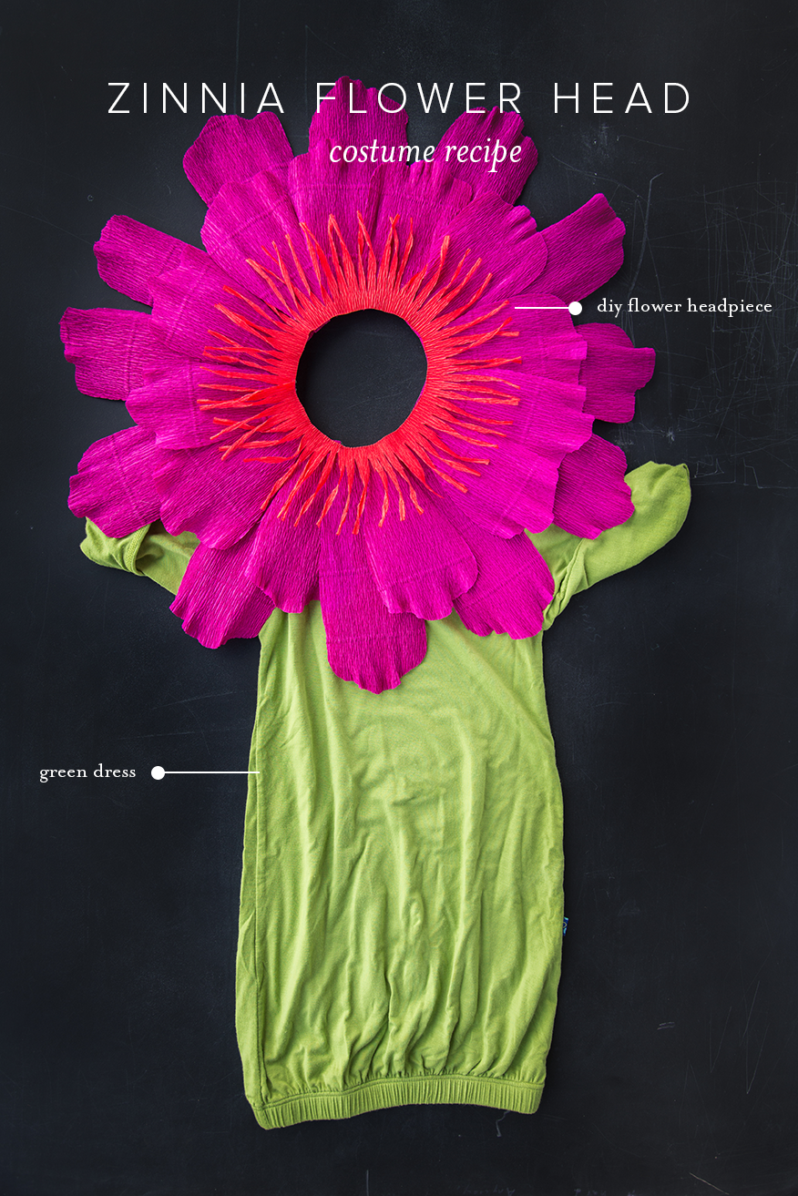 3 Flower Costumes For Your Baby Page 3 Of 3 The House That Lars