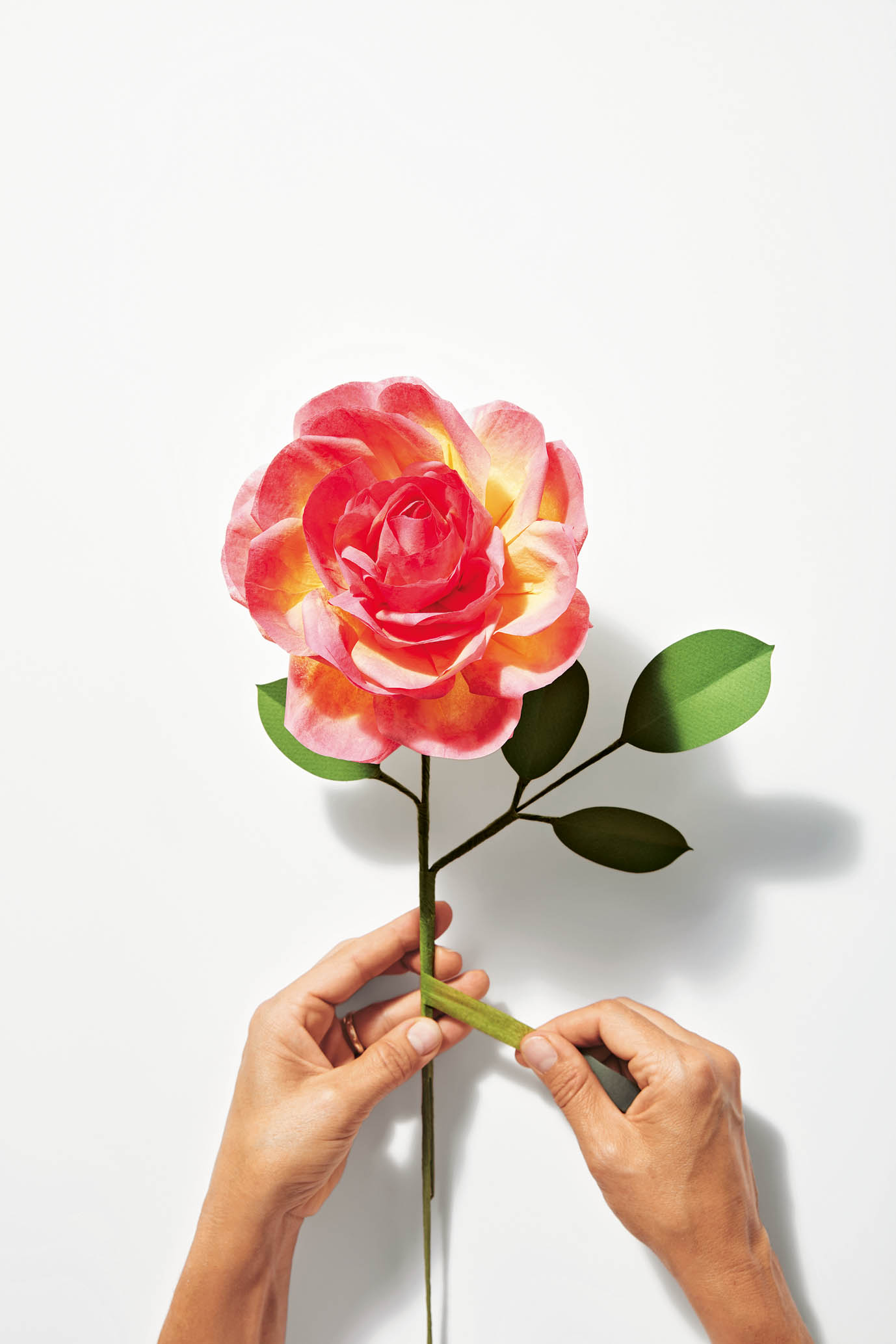 How to make an eden rose the house that lars built the exquisite book of paper flower transformations mightylinksfo