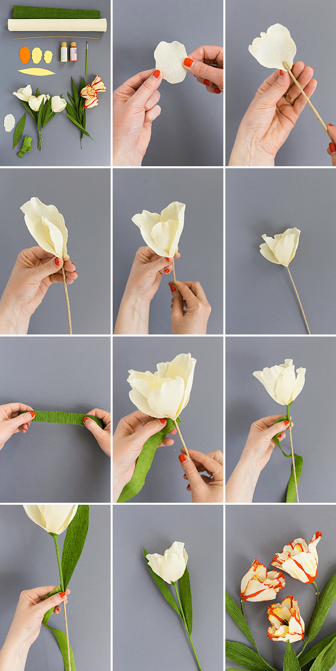 Make a parrot tulip