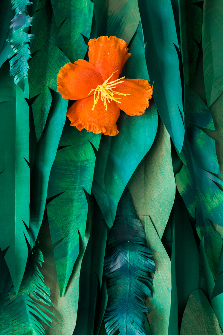 Tropical Leaf and Hibiscus Backdrop