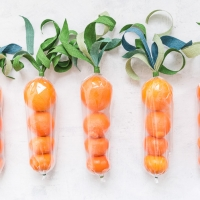 Citrus Carrot Favor