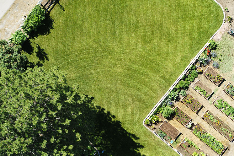 Lawn Rainbow Makeover