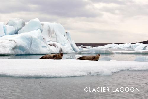Iceland Part 1: Glacier Lagoon