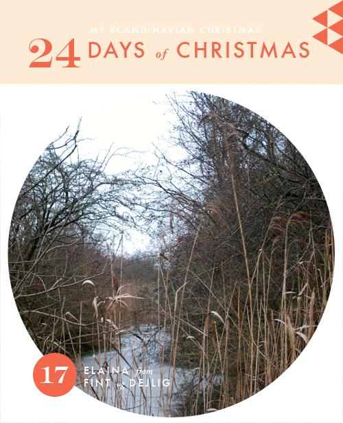 My Scandinavian Christmas day 20