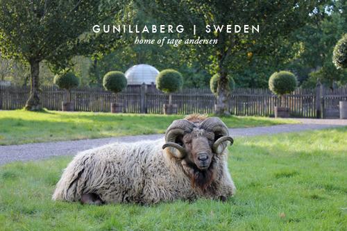 Gunillaberg, Sweden Part 1