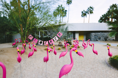 put out tons of flamingos in someone's lawn