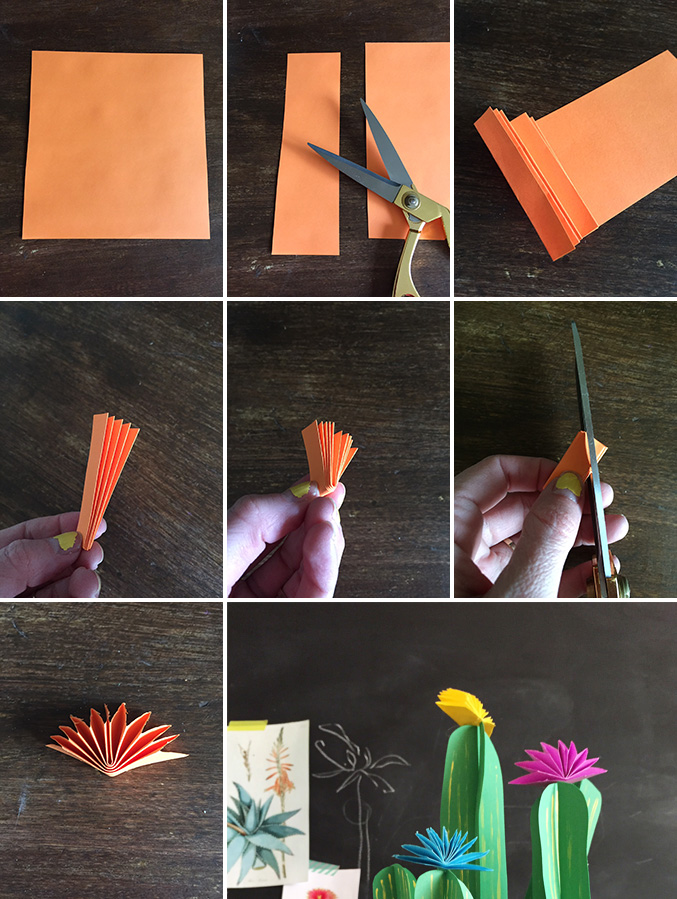 colorful accessory for cactus