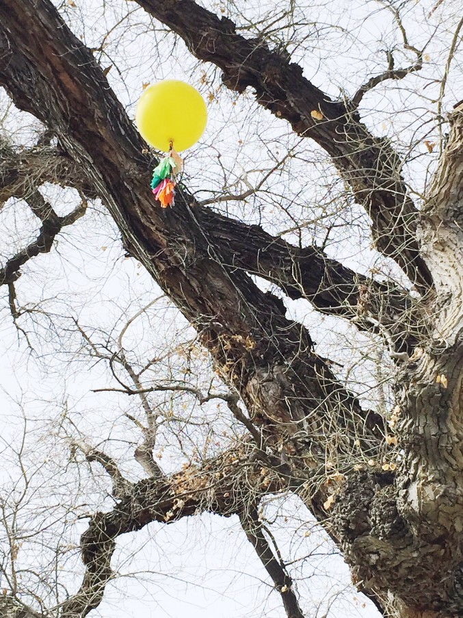 balloon stuck in a tree