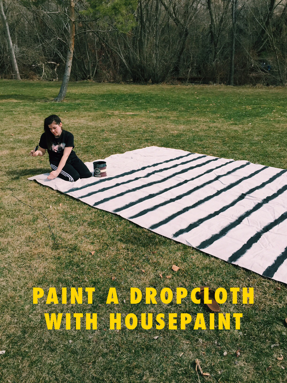 Paint a dropcloth with housepaint