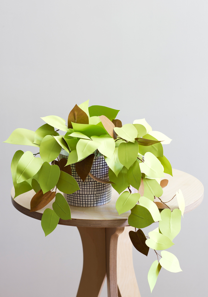 Paper heartleaf philodendron in bright green in a checkered pot on a wooden table