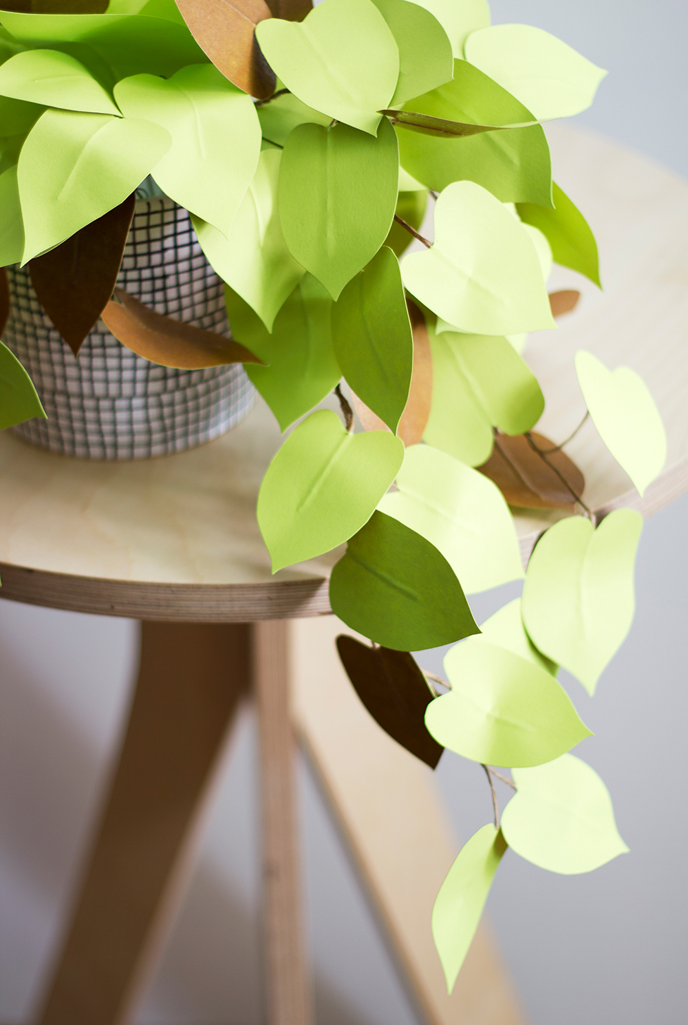 Corrie_Hogg_paper_heartleaf_philodendron_plant_DIY_5-the-house-that-lars-built