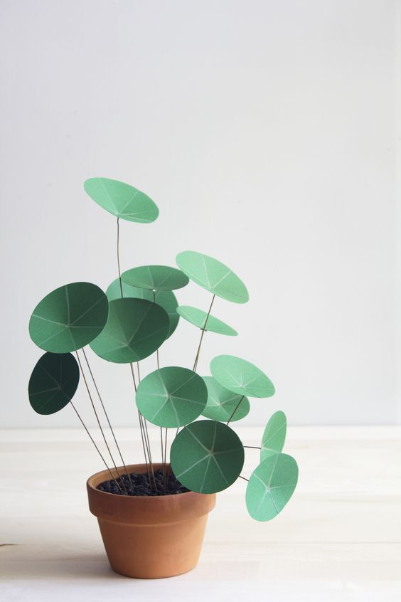chinese money plant made from paper