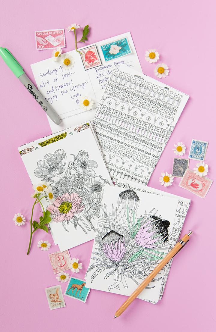 lars-coloring-postcards4-edited