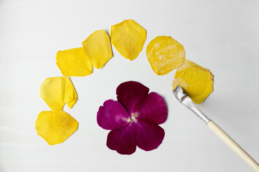 pressed-flower-tray-diy-5