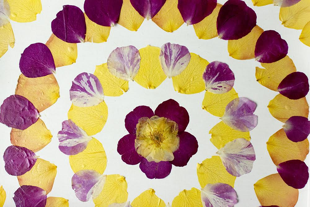 pressed-flower-tray-diy-7