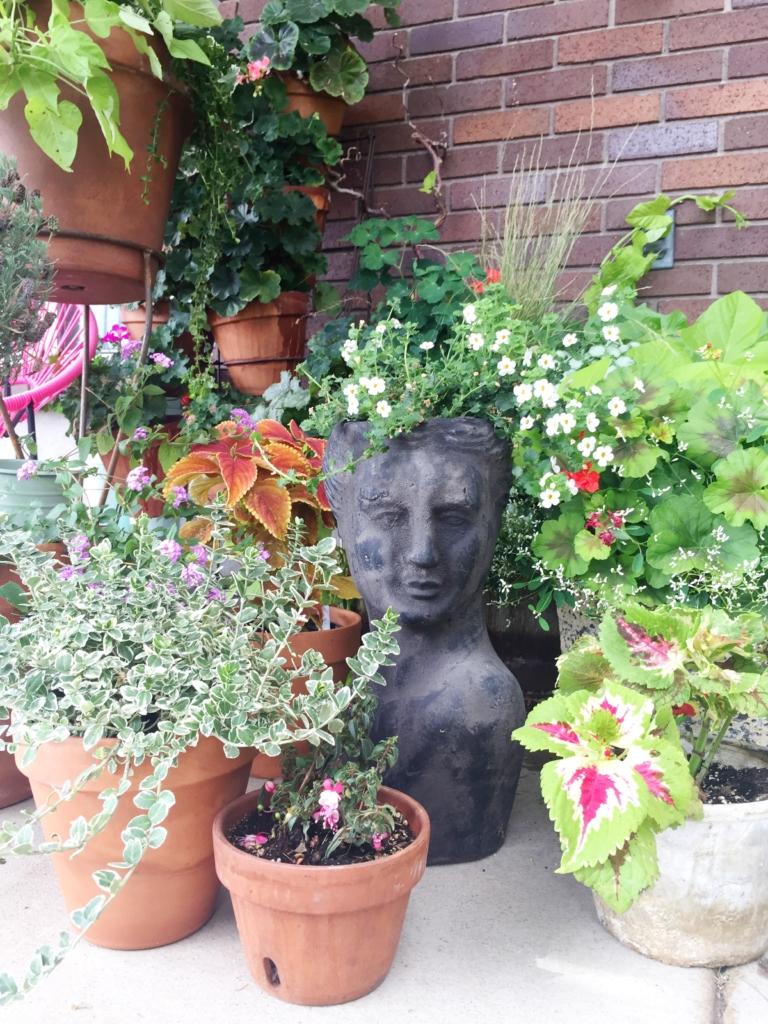 planter garden with a sculptural head planter