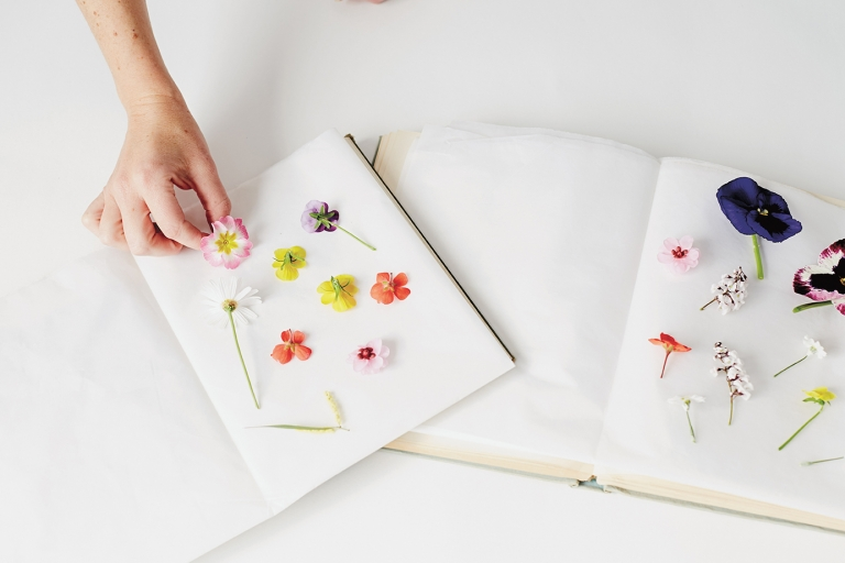 How to press flowers in 3 methods