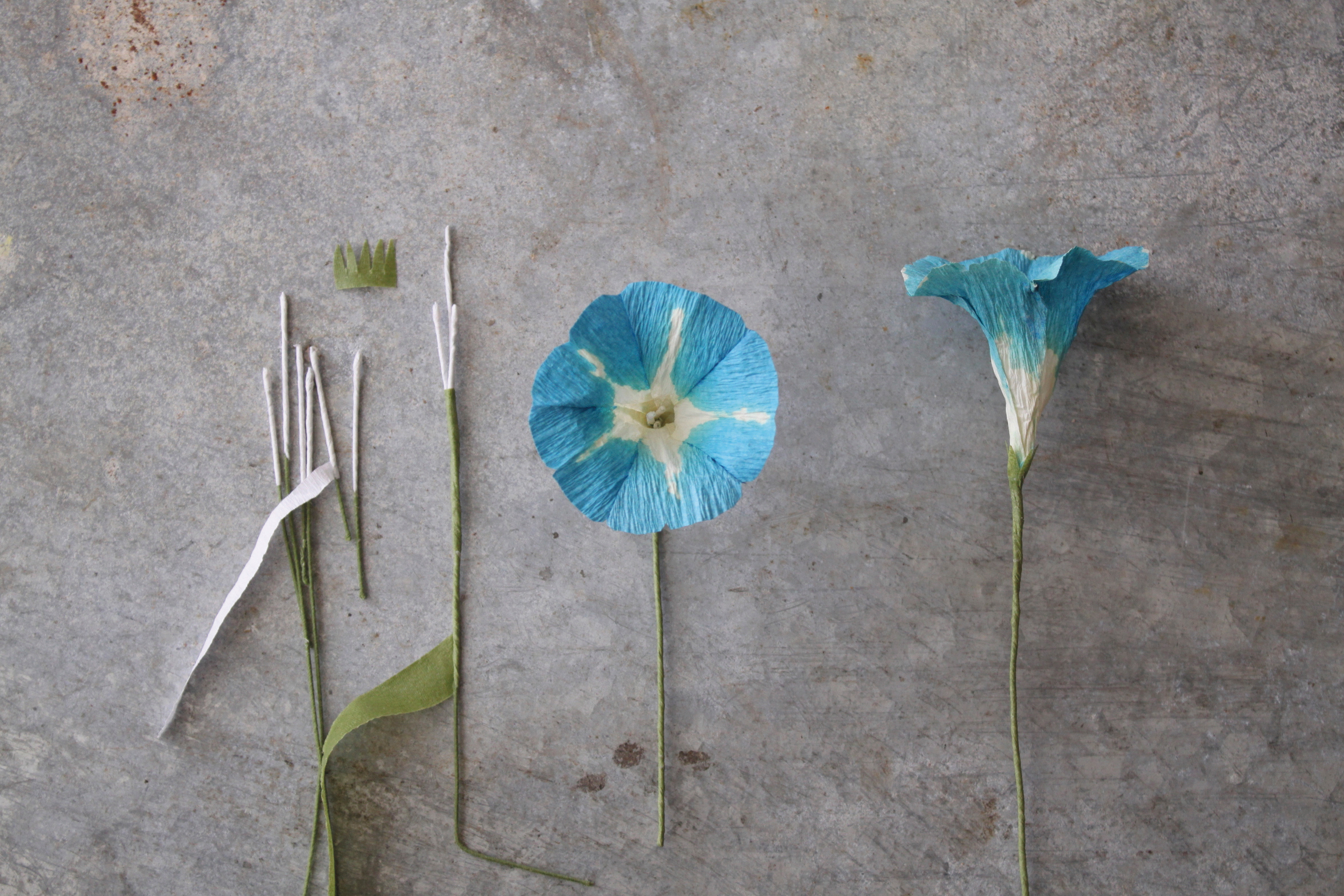 Morning Glory Fine Art Of Paper Flowers And Giveaway The House