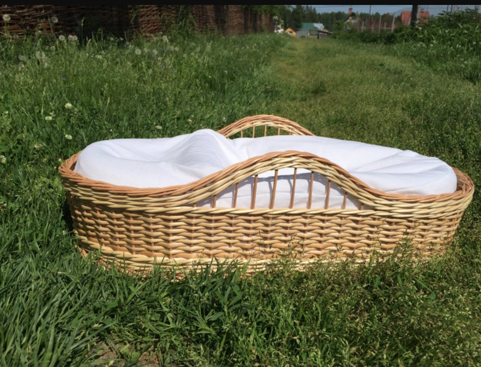 Rattan moses basket in a grassy field