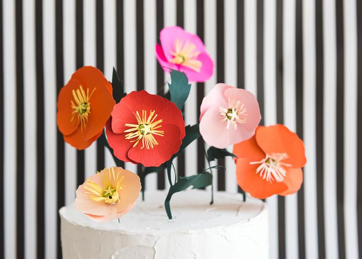 Icelandic Paper Poppy