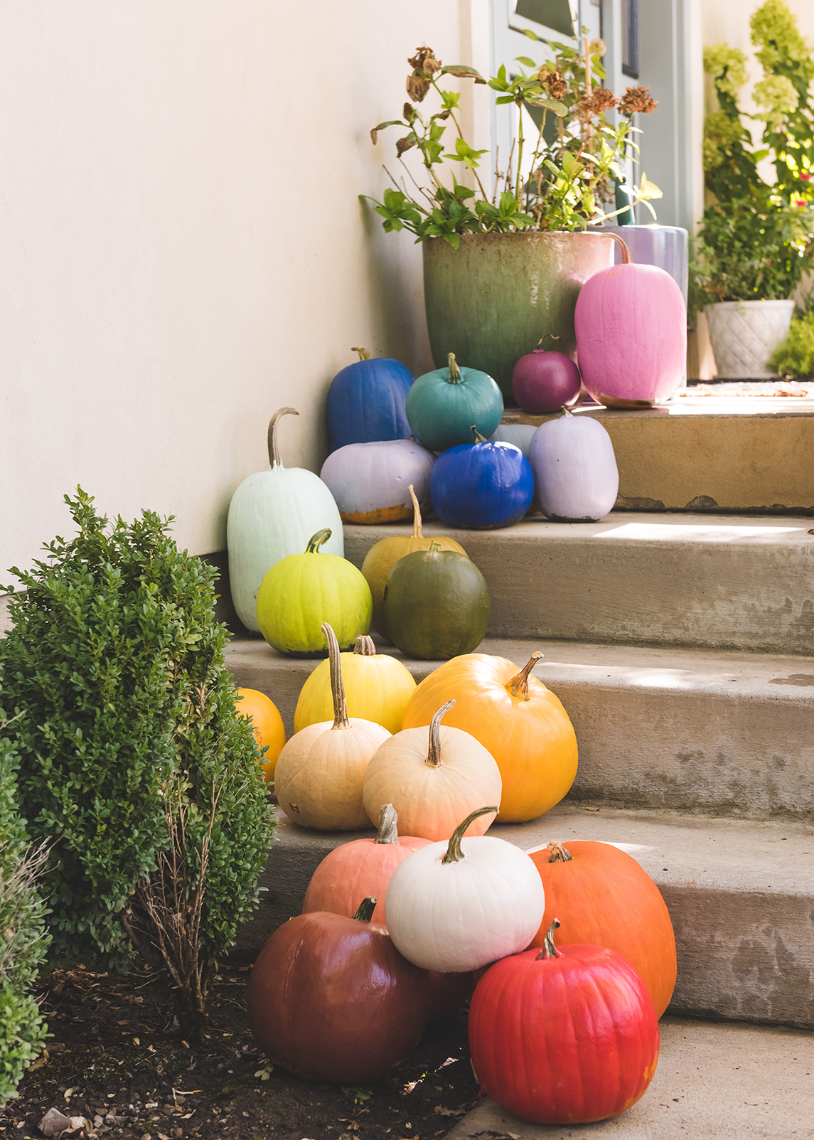 DIY Rainbow Pumpkins