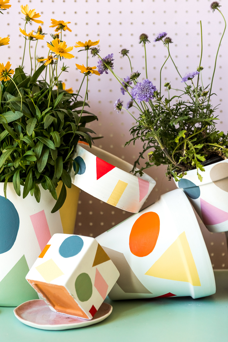 Anxiety-relieving crafts painted pots for houseplants