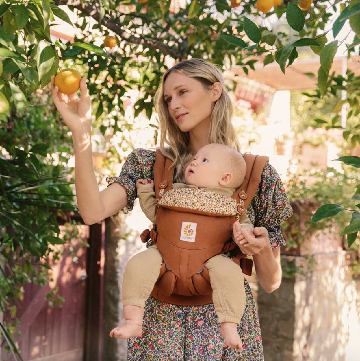 A blonde woman carries a baby in an omni 360 baby carrier in the colorway field of daisies. She is picking an orange from a tree.