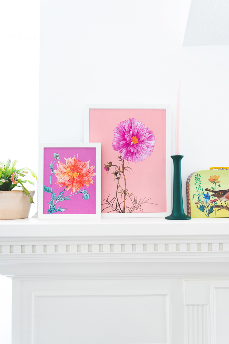 Two pink floral art prints on a white mantle next to a potted plant, a green candlestick, and a vintage lunchbox