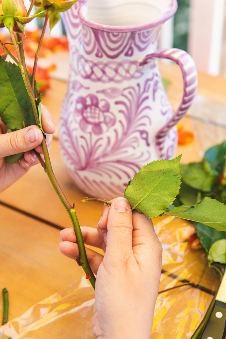 A person removes rose leaves from a stem. In the background are rose petals, greenery, and a purple and white vase on a picnic table.