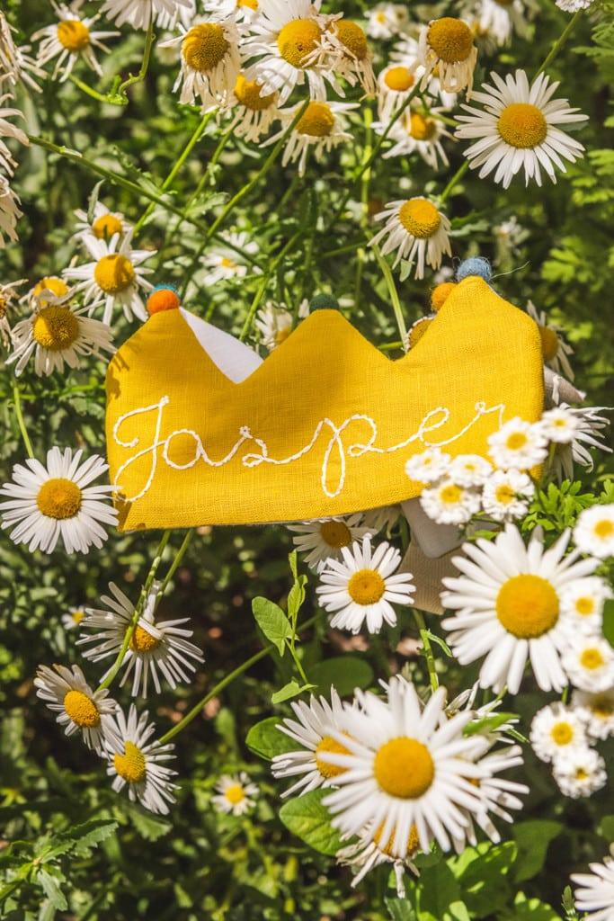 Jasper's yellow Flower Lane crown in a field of daisies.