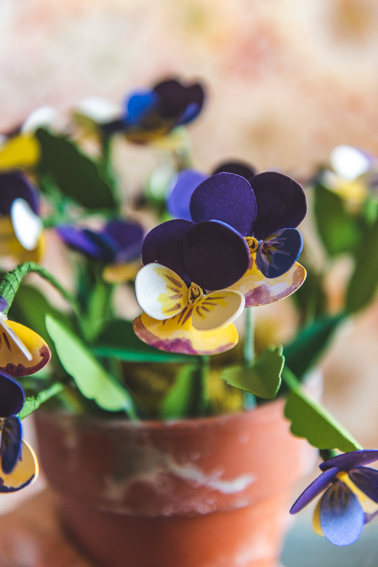 Closeup view of paper pansies in a distressed terracotta pot against a blurred warm background.