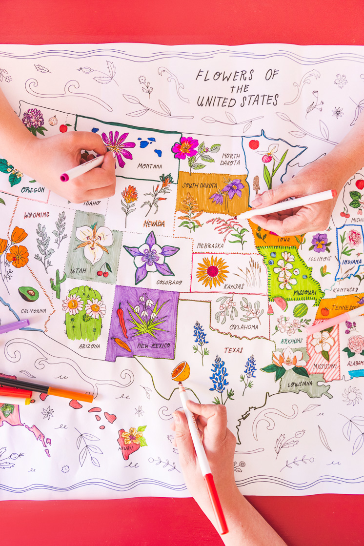 State Flower Map Coloring Poster