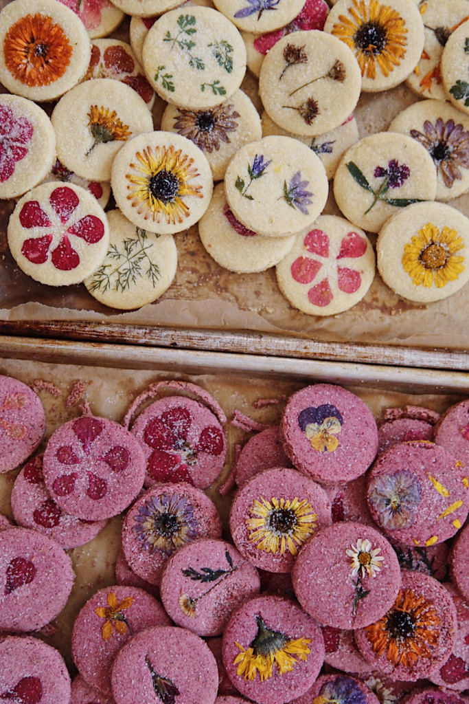 Two pans of botanical cookies with pressed flowers. The ones on the top are a vanilla shortbread and the ones on the bottom are pink.