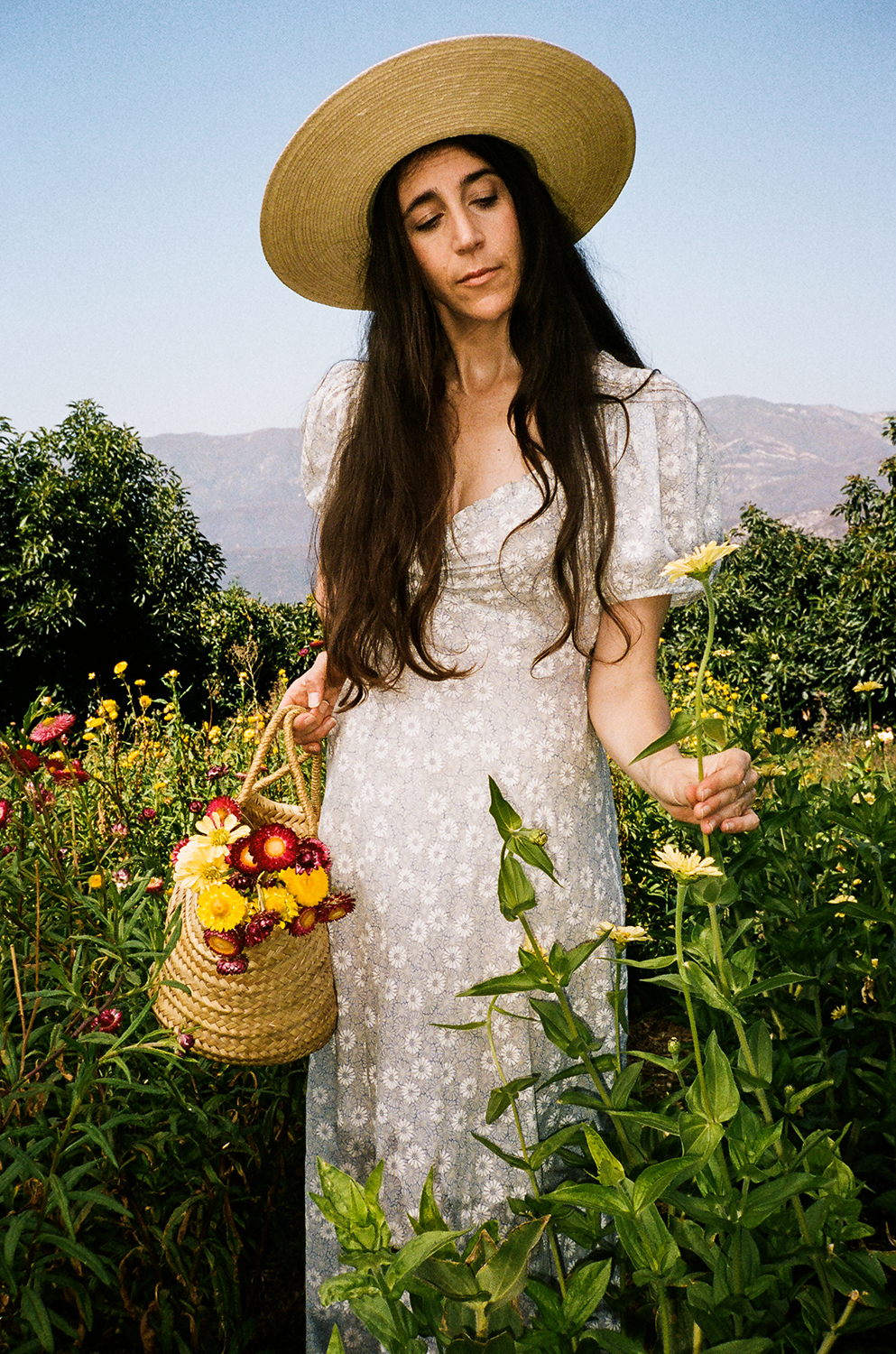 Loria Stern, a tall woman with brown hair wearing a white dress and a straw hat, stands in a field of flowers with a basket of flowers in her hand.